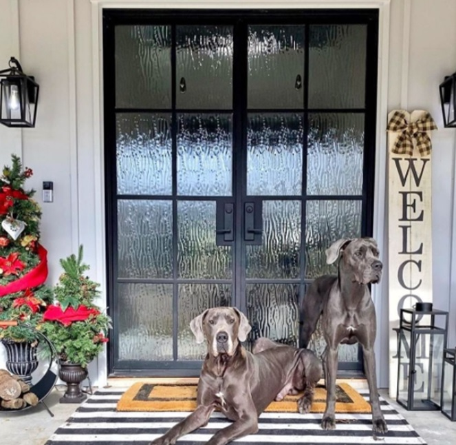 Examining Types of Steel Doors in Mississippi Homes