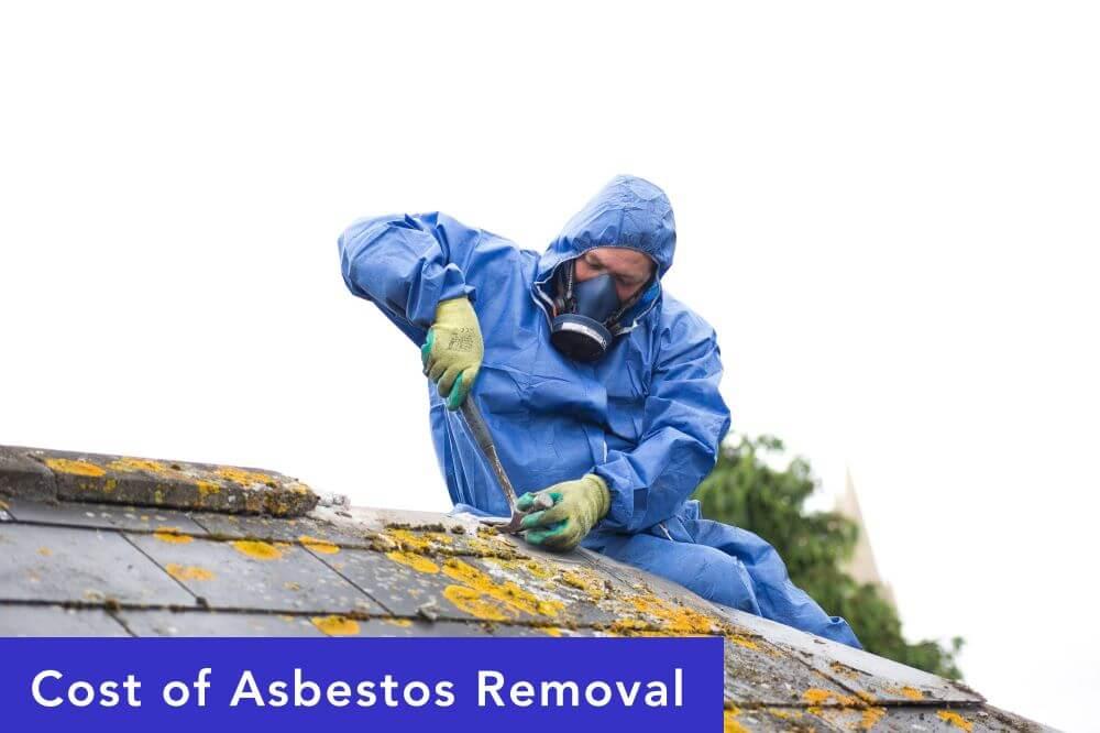 The Dark History of Asbestos Revealed