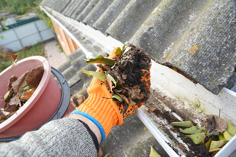 Gutter Cleaning Service: What Are the Benefits?